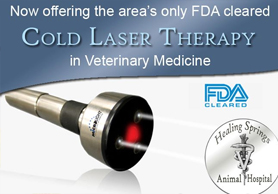 Cold Laser Therapy Device - Only FDA Cleared Cold Laser